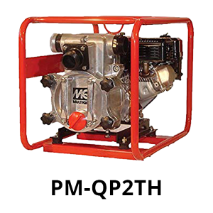 Image of a Centrifugal Water Pump: Model PM-QP2TH
