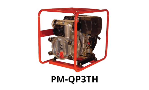Image of a Centrifugal Water Pump: Model PM-QP3TH